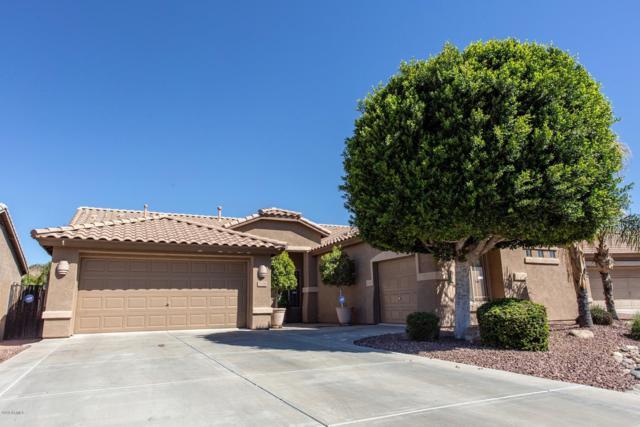 7126 W Bronco Trail, Peoria, AZ 85383 (MLS #5898004) :: Yost Realty Group at RE/MAX Casa Grande