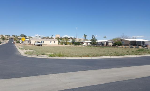 3801 N Indiana Avenue, Florence, AZ 85132 (MLS #5898013) :: The W Group