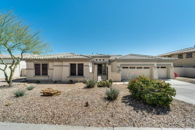 16213 S 29TH Avenue, Phoenix, AZ 85045 (MLS #5898014) :: Conway Real Estate