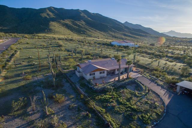 10210 S 19TH Avenue, Phoenix, AZ 85041 (MLS #5898017) :: The Jesse Herfel Real Estate Group