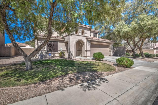 9054 E Plana Avenue, Mesa, AZ 85212 (MLS #5898019) :: Yost Realty Group at RE/MAX Casa Grande