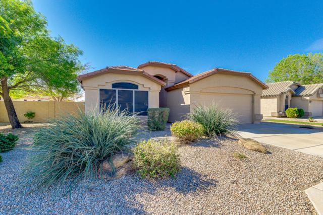 9829 E Onza Avenue, Mesa, AZ 85212 (MLS #5898036) :: Revelation Real Estate