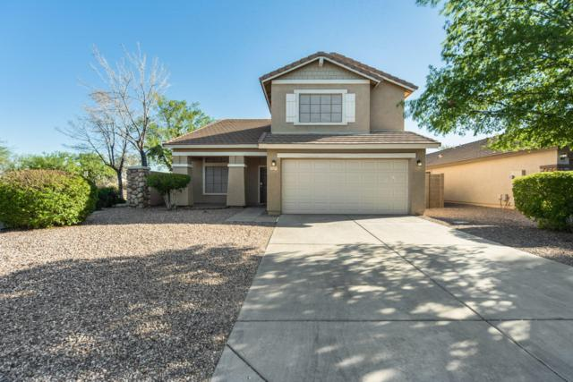 2557 W Wrangler Way, Queen Creek, AZ 85142 (MLS #5898048) :: Revelation Real Estate