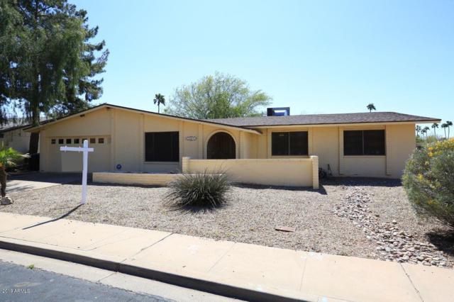 1367 W Lobo Avenue, Mesa, AZ 85202 (MLS #5898051) :: Revelation Real Estate