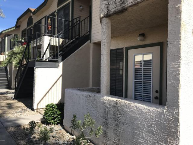8888 N 47th Avenue #135, Glendale, AZ 85302 (MLS #5898057) :: Yost Realty Group at RE/MAX Casa Grande