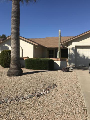 9630 W Rosemonte Drive, Peoria, AZ 85382 (MLS #5898060) :: Conway Real Estate