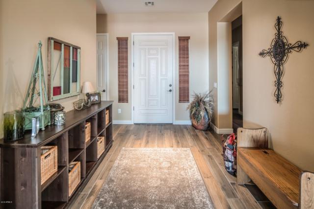 3447 E Glacier Place, Chandler, AZ 85249 (MLS #5898071) :: Team Wilson Real Estate
