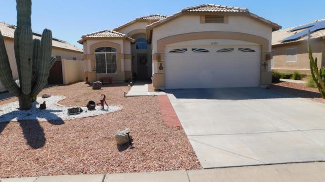 10379 W Potter Drive, Peoria, AZ 85382 (MLS #5898072) :: Conway Real Estate
