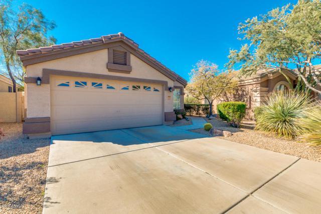 4131 E Desert Sky Court, Cave Creek, AZ 85331 (MLS #5898118) :: RE/MAX Excalibur