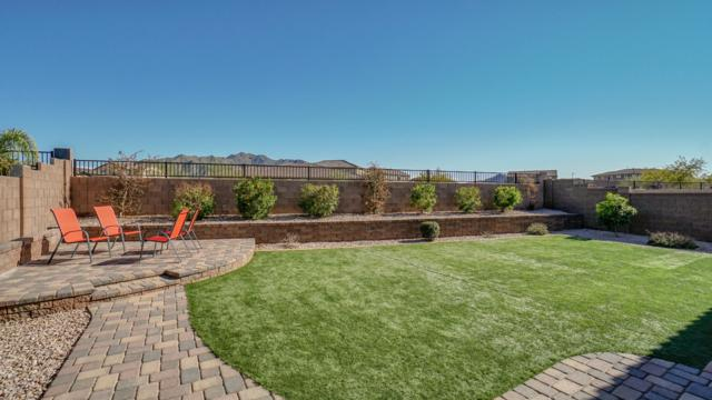 2721 E Daniel Drive, Gilbert, AZ 85298 (MLS #5898156) :: Revelation Real Estate