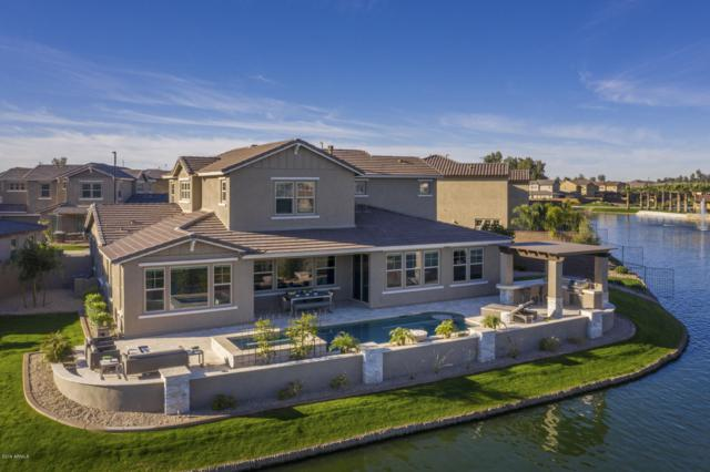 936 W Grand Canyon Drive, Chandler, AZ 85248 (MLS #5898179) :: The Wehner Group