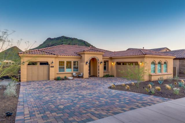 10851 N 137TH Street, Scottsdale, AZ 85259 (MLS #5898197) :: The Wehner Group