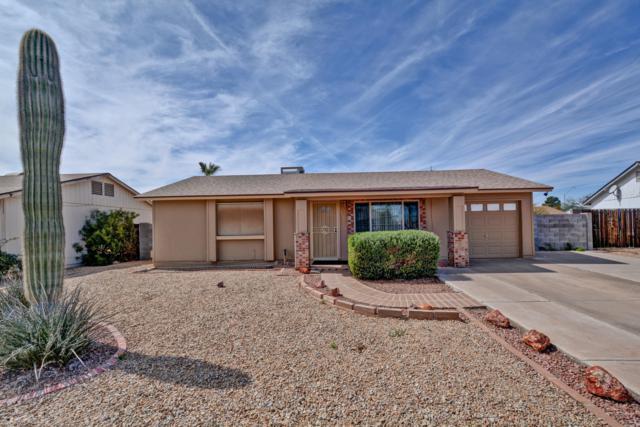18434 N 32ND Lane, Phoenix, AZ 85053 (MLS #5898210) :: Yost Realty Group at RE/MAX Casa Grande