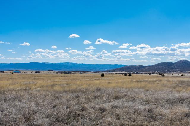 12825 E Mingus Vista Drive, Prescott Valley, AZ 86315 (MLS #5898216) :: The Wehner Group