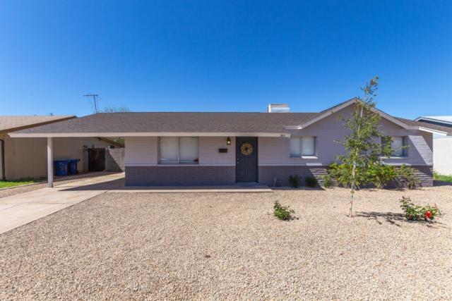 3414 S Margo Drive, Tempe, AZ 85282 (MLS #5898237) :: Homehelper Consultants