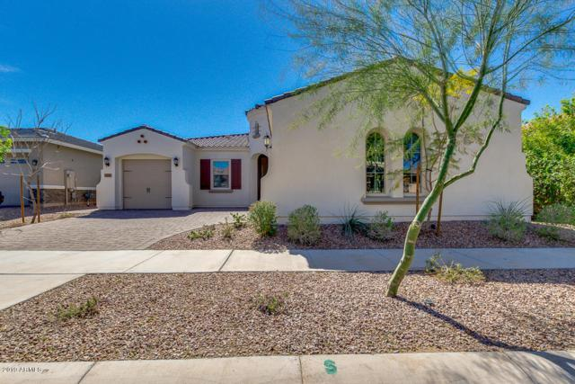10553 E Lincoln Avenue, Mesa, AZ 85212 (MLS #5898261) :: Yost Realty Group at RE/MAX Casa Grande