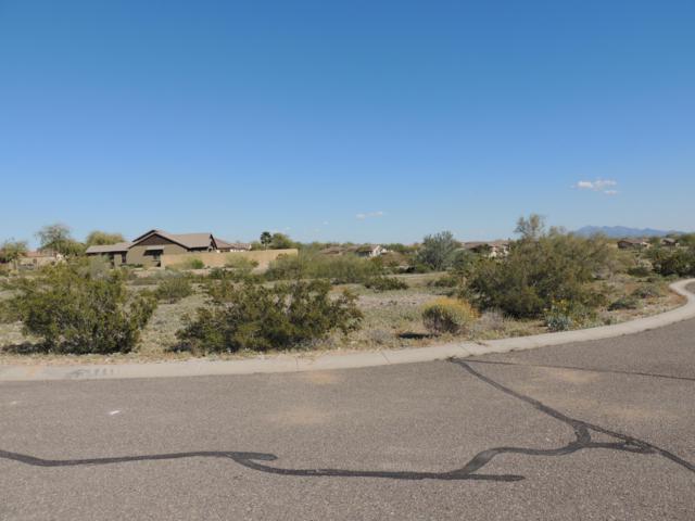 21163 W Western Drive, Buckeye, AZ 85396 (MLS #5898276) :: CC & Co. Real Estate Team