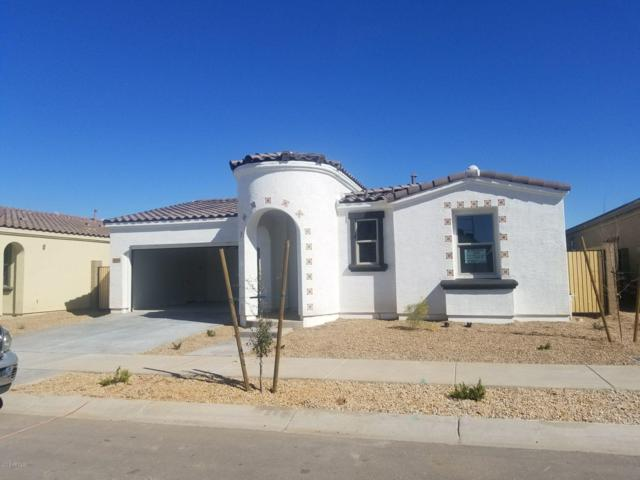 22566 E Via Las Brisas, Queen Creek, AZ 85142 (MLS #5898322) :: The Everest Team at My Home Group