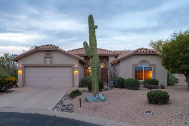 7702 E Chuparosa Circle, Gold Canyon, AZ 85118 (MLS #5898327) :: RE/MAX Excalibur