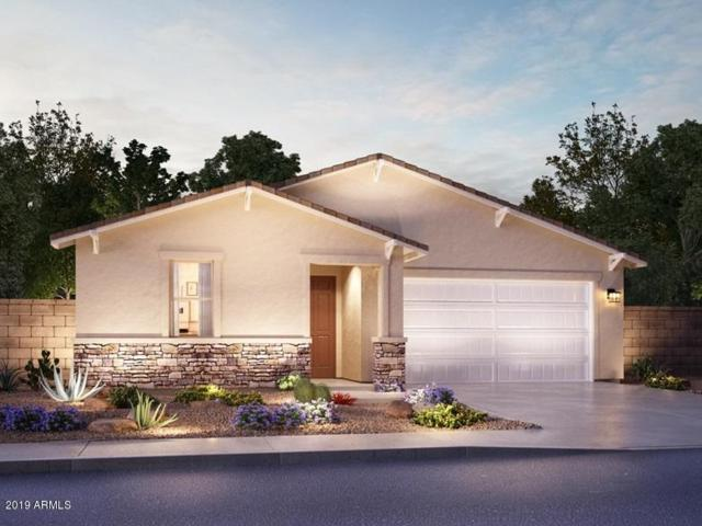 7183 E Mallard Court, San Tan Valley, AZ 85143 (MLS #5898332) :: Conway Real Estate