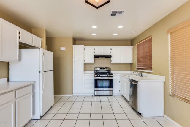 910 W Hudson Way, Gilbert, AZ 85233 (MLS #5898335) :: CC & Co. Real Estate Team