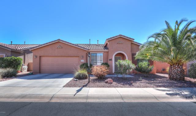 42495 W Constellation Drive, Maricopa, AZ 85138 (MLS #5898344) :: Occasio Realty
