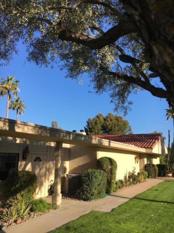 7814 E San Carlos Road E, Scottsdale, AZ 85258 (MLS #5898348) :: CC & Co. Real Estate Team