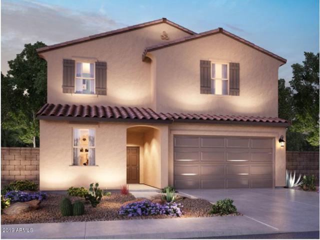 7242 E Hatchling Way, San Tan Valley, AZ 85143 (MLS #5898382) :: Conway Real Estate