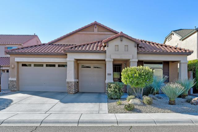 23014 N 42nd Place, Phoenix, AZ 85050 (MLS #5898387) :: RE/MAX Excalibur
