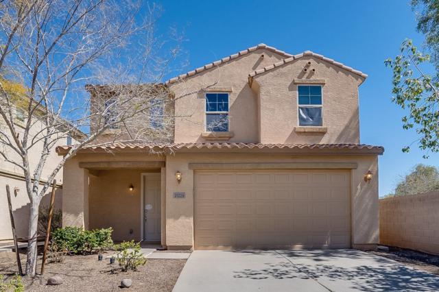 31229 N Cavalier Drive, San Tan Valley, AZ 85143 (MLS #5898397) :: Santizo Realty Group
