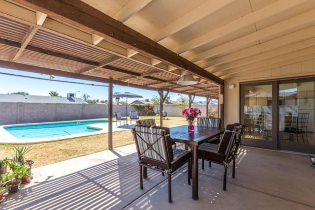 933 W Yale Drive, Tempe, AZ 85283 (MLS #5898403) :: Homehelper Consultants