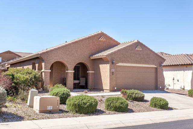 7564 W Millerton Way, Florence, AZ 85132 (MLS #5898404) :: CC & Co. Real Estate Team
