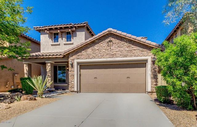 3812 E Matthew Drive, Phoenix, AZ 85050 (MLS #5898421) :: Conway Real Estate