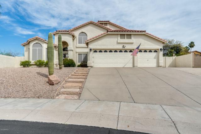 1294 E Voltaire Avenue, Phoenix, AZ 85022 (MLS #5898426) :: CC & Co. Real Estate Team