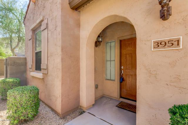 3951 E Melinda Drive, Phoenix, AZ 85050 (MLS #5898428) :: Conway Real Estate