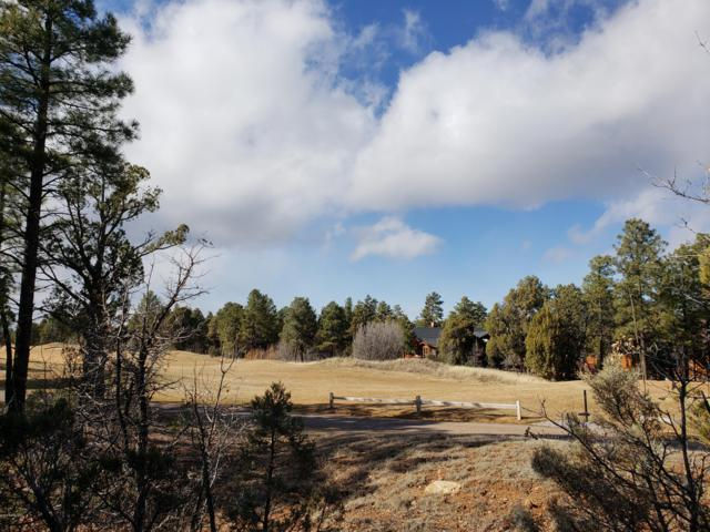 40 S Falling Leaf Road, Show Low, AZ 85901 (MLS #5898433) :: Scott Gaertner Group