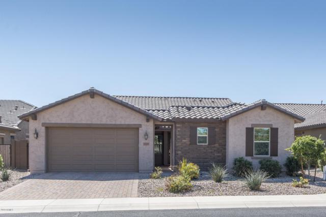 19559 W Lincoln Street, Buckeye, AZ 85326 (MLS #5898435) :: Yost Realty Group at RE/MAX Casa Grande