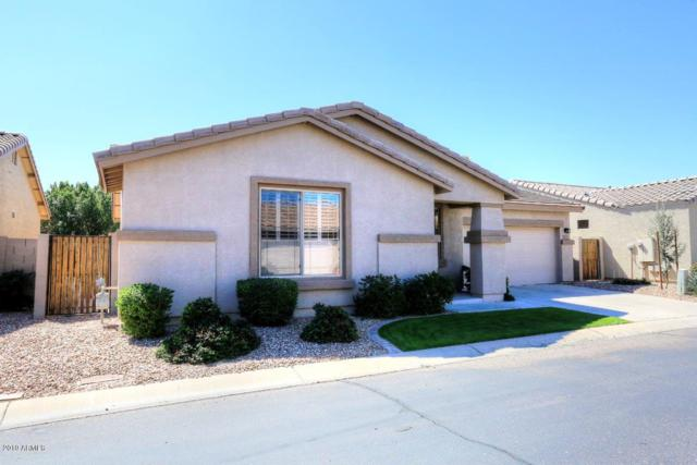 7013 E Lindner Avenue, Mesa, AZ 85209 (MLS #5898484) :: Team Wilson Real Estate