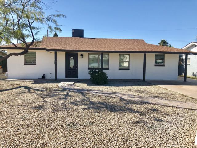 4613 E Holly Street, Phoenix, AZ 85008 (MLS #5898500) :: Yost Realty Group at RE/MAX Casa Grande