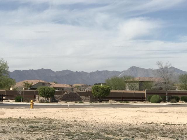 1827 S 166TH Avenue, Goodyear, AZ 85338 (MLS #5898542) :: Yost Realty Group at RE/MAX Casa Grande