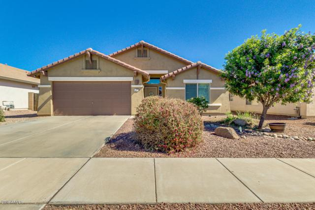 10465 E Dutchmans Trail, Gold Canyon, AZ 85118 (MLS #5898555) :: The Everest Team at My Home Group