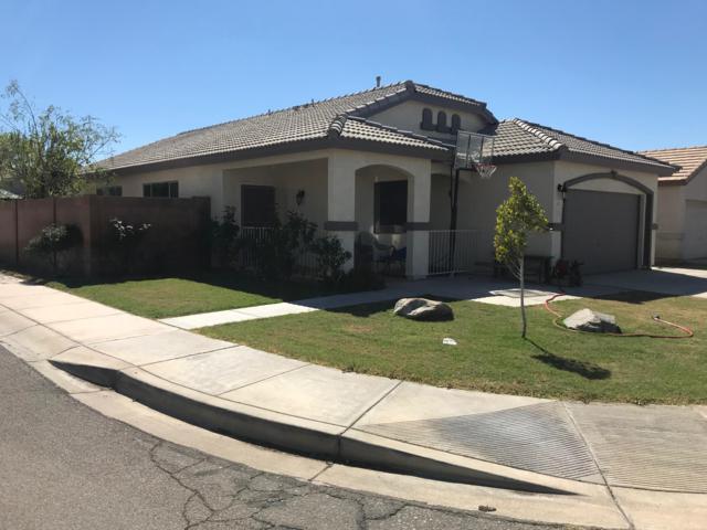 11171 W Palm Lane, Avondale, AZ 85323 (MLS #5898556) :: The AZ Performance Realty Team