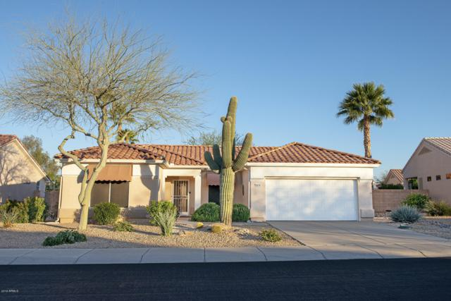 19219 N 138TH Avenue, Sun City West, AZ 85375 (MLS #5898575) :: Yost Realty Group at RE/MAX Casa Grande