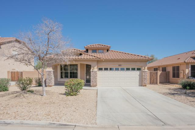 9683 N 83RD Drive, Peoria, AZ 85345 (MLS #5898588) :: The Everest Team at My Home Group