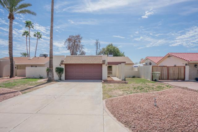 5131 W Mountain View Road, Glendale, AZ 85302 (MLS #5898597) :: The Everest Team at My Home Group