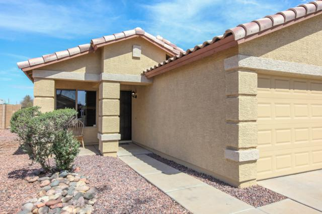 6638 W Nez Perce Street, Phoenix, AZ 85043 (MLS #5898616) :: Yost Realty Group at RE/MAX Casa Grande