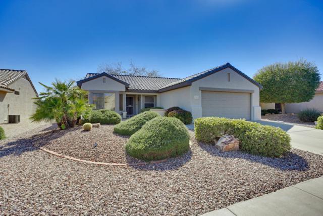 15511 W Encantada Drive, Surprise, AZ 85374 (MLS #5898618) :: Homehelper Consultants