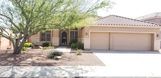 127 E Mesquite Court, Gilbert, AZ 85296 (MLS #5898630) :: Homehelper Consultants