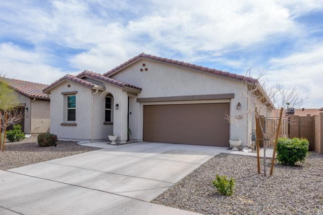 8527 W Lamar Road, Glendale, AZ 85305 (MLS #5898636) :: Homehelper Consultants