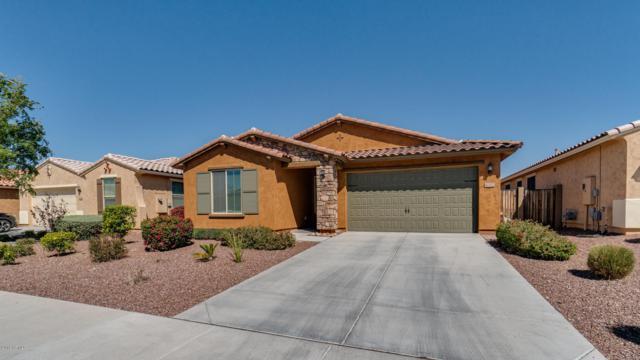 10322 W Rosewood Lane, Peoria, AZ 85383 (MLS #5898657) :: REMAX Professionals